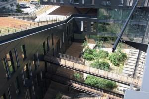 Terrasse Cumaru - Massy Palaiseaux